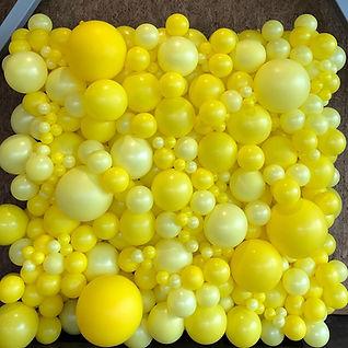 AirCraft Balloon Designs Yellow Organic