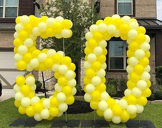 AirCraft Balloon Designs Yard Number