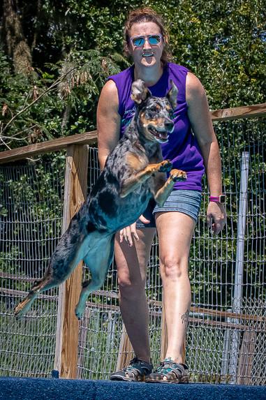Dogwalker-Sep14-2019-346