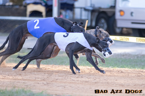 Lure-Race1-12-18-116