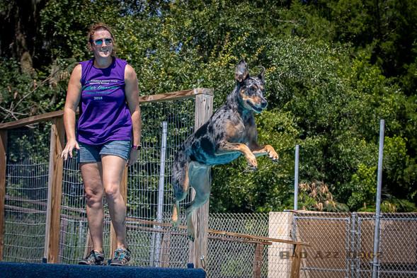 Dogwalker-Sep14-2019-348