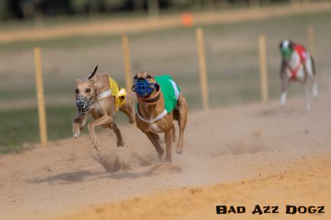 Lure-Race1-12-18-171