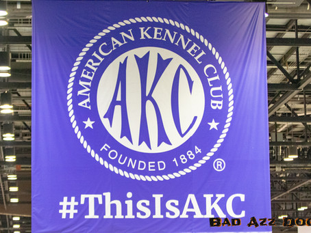 AKC Nationals 2018 - 4 Day Photo-Feature