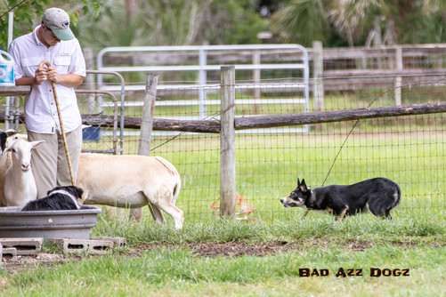 AsherDell-May2019-346