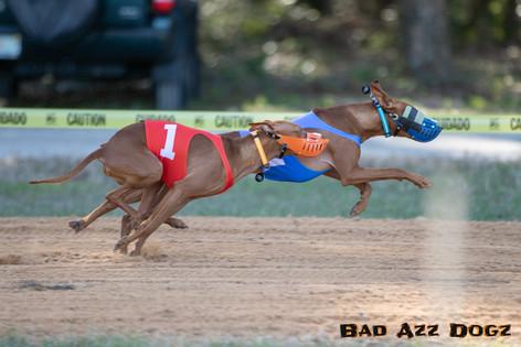 Lure-Race1-12-18-115