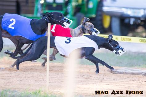 Lure-Race1-12-18-117