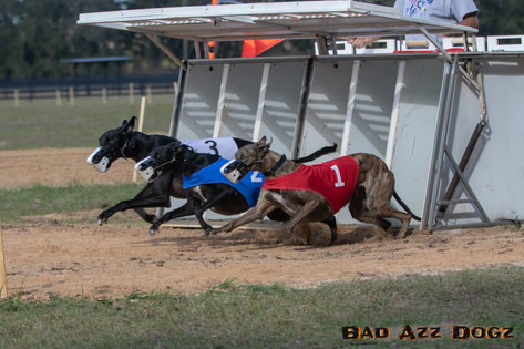 Lure-Race1-12-18-169