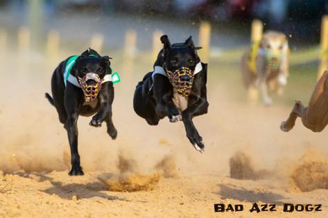 Lure-Race1-12-18-120
