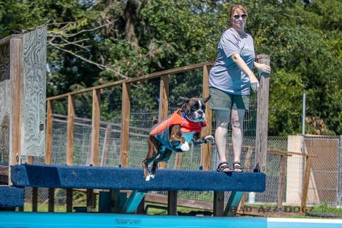 Dogwalker-Sep14-2019-280