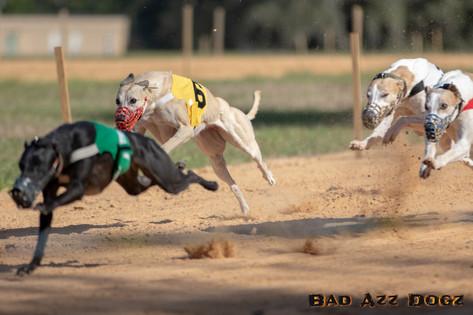 Lure-Race1-12-18-134