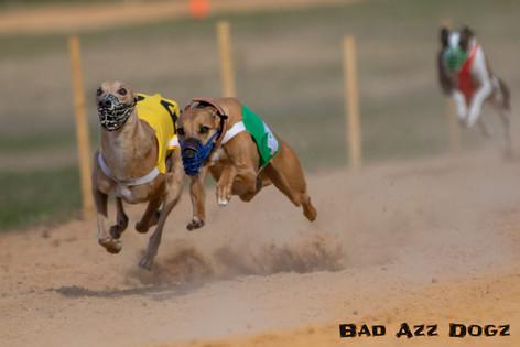 Lure-Race1-12-18-170