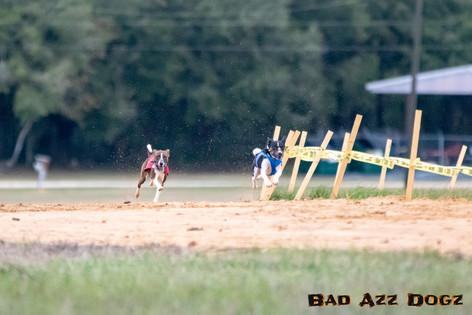 racing-holiday-classic-154