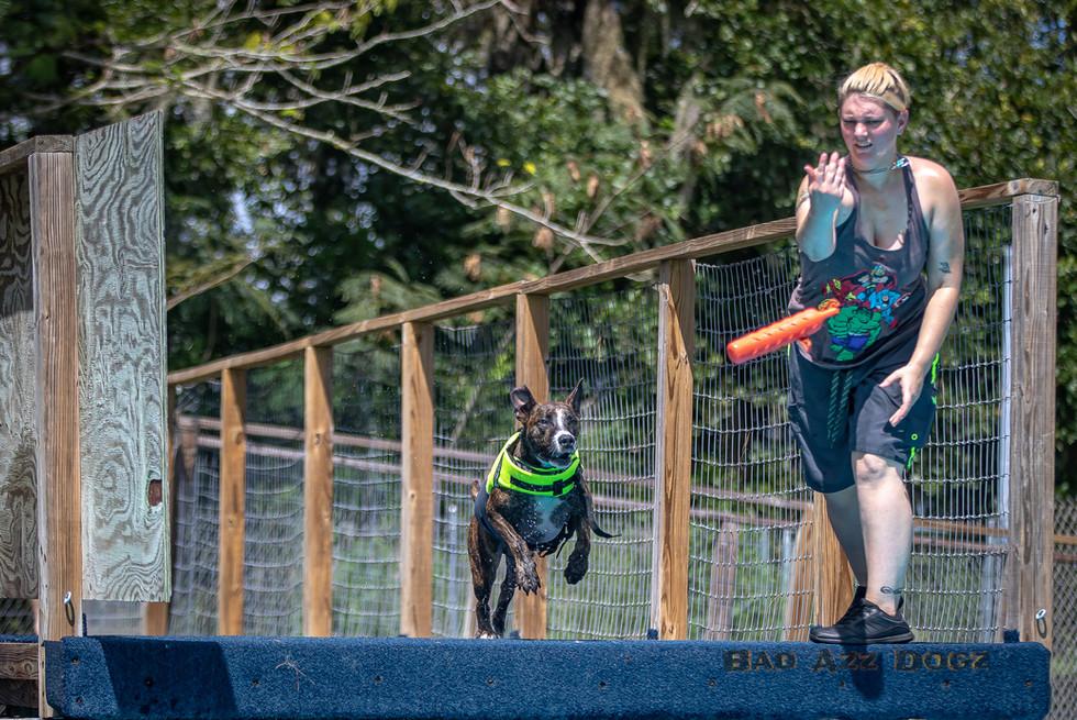 Dogwalker-Sep14-2019-277