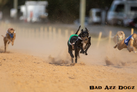 Lure-Race1-12-18-119