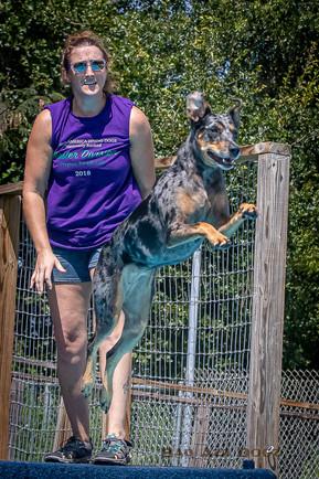 Dogwalker-Sep14-2019-347