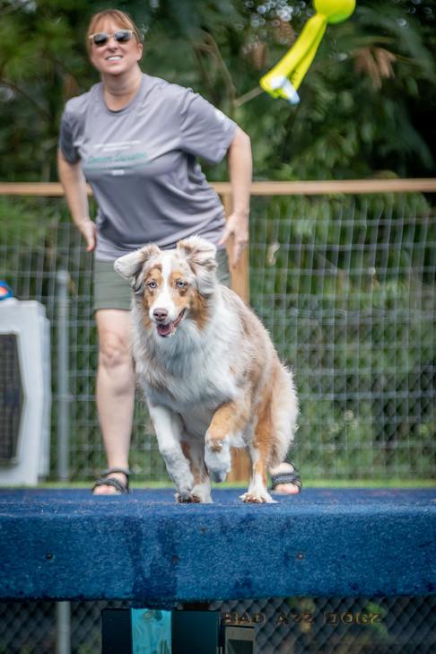 Dogwalker-Sep14-2019-180