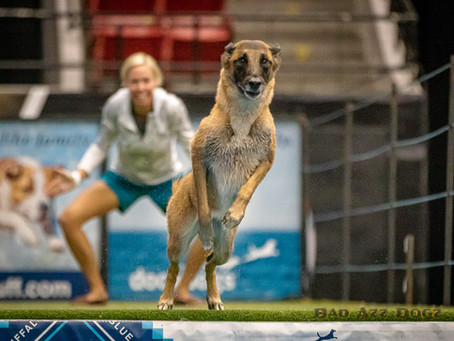 DockDogs Steal the Show