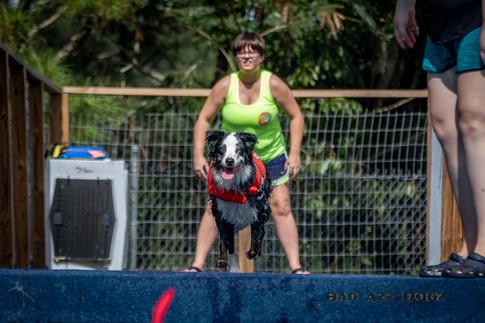 Dogwalker-Sep14-2019-166