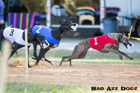 Lure-Race1-12-18-123