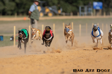 Lure-Race1-12-18-173