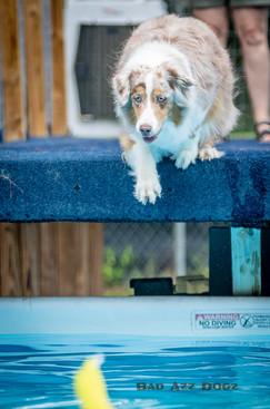 Dogwalker-Sep14-2019-185