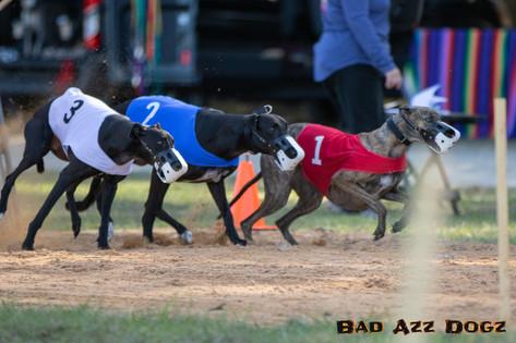 Lure-Race1-12-18-122