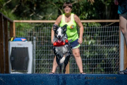 Dogwalker-Sep14-2019-167