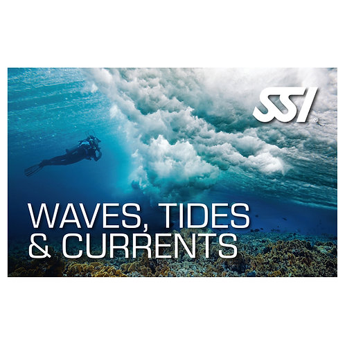 SSI Waves, Currents & Tides