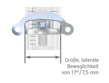 TAP%20Scharch-Schiene_1_edited.jpg