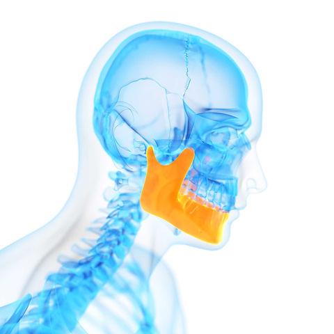 Kopf-und-Hals-Chirurgie_Kieferschwund_MK