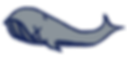 alyssandra_whale.png