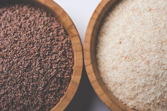 psyllium en grains et en poudre recettes