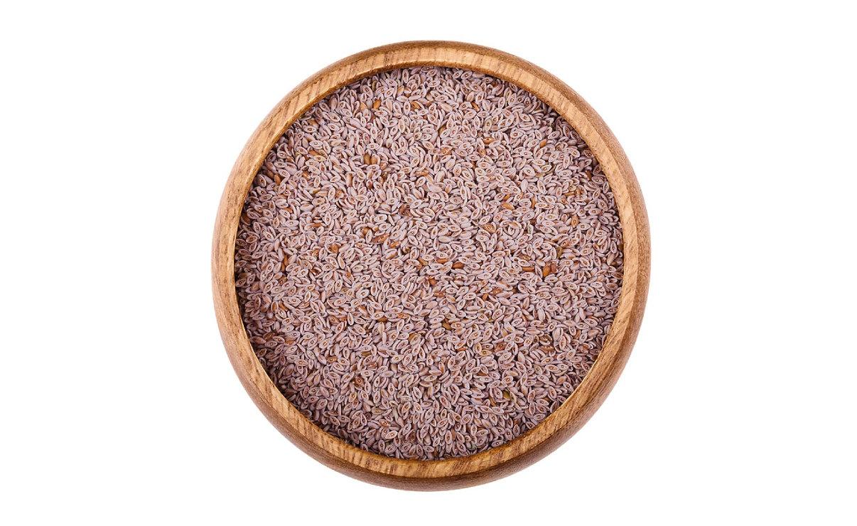 psyllium en grains recettes