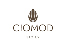 CIOMOD-LOGO-DEF-01%20copia_edited.png