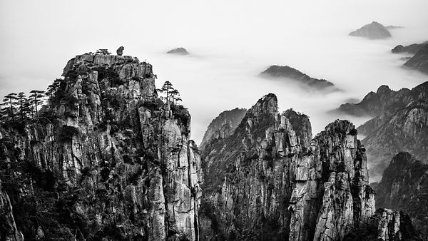 A rock monkey overlookng the sea of clouds