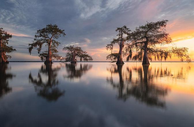 Cypress Swamp Photo Workshop