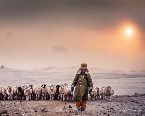 A farmer and his sheeps