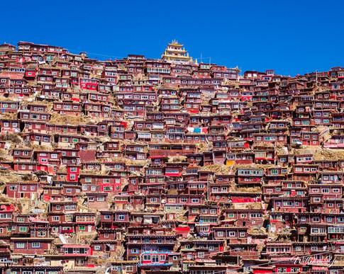 Serta Tibetan Buddhist Institute