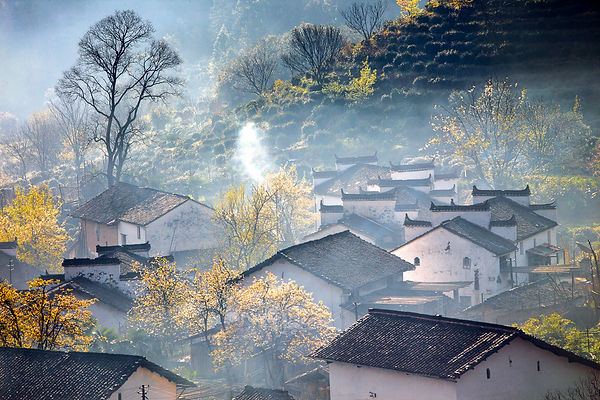 Morning haze in a village