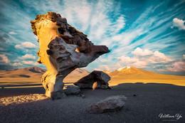 The Rock Flower, Bolivia