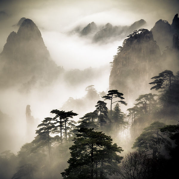 Fog shrouded Mt. Huangshan
