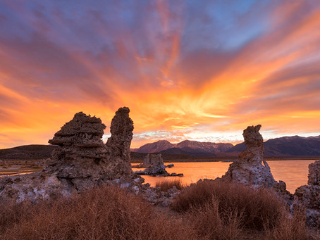 Fall Colors & Milky Way photography in Eastern Sierra