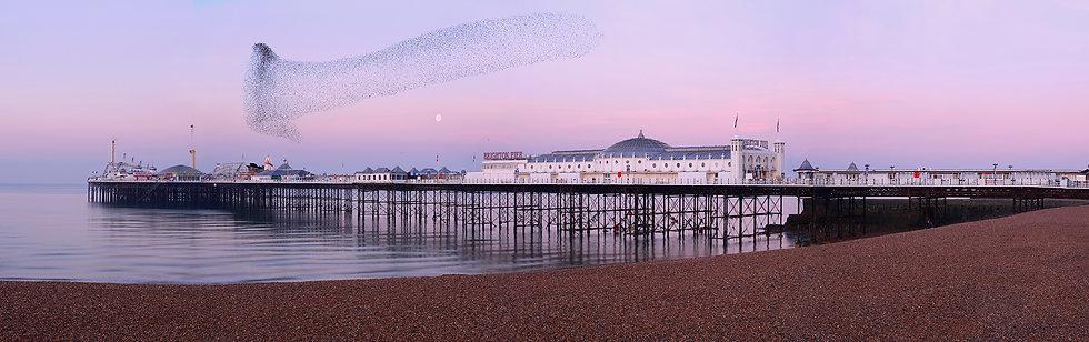 Brighton calm waters