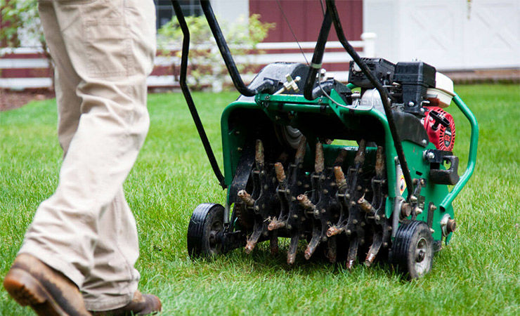 Aeration and Lawn Care