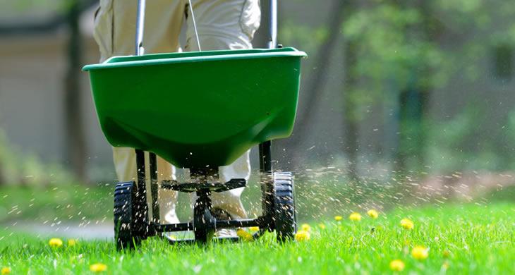 Lawn Care - Fertilization