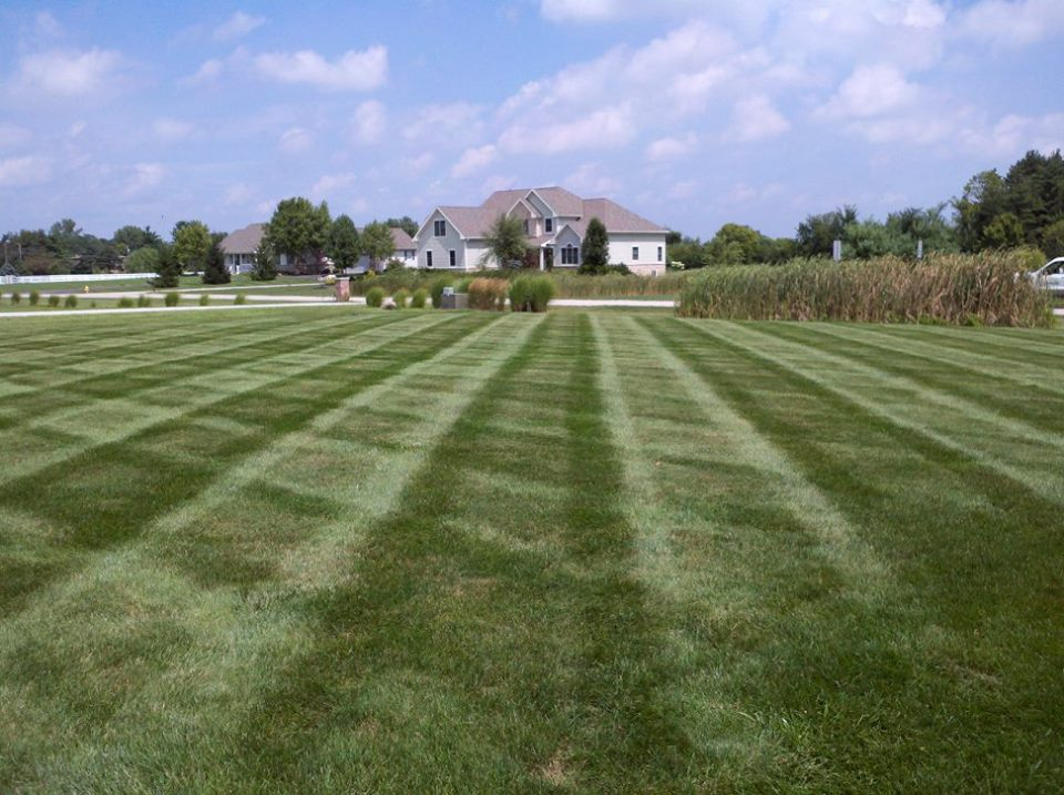 Commercial Turf Mowing