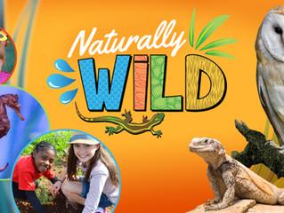 Living Coast Discovery Center Kicks Off Naturally Wild Seasonal Programming Series