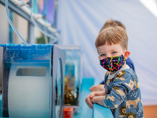Explore Museums and More During Kids Free San Diego