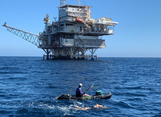 Del Mar Students Earn Fifth World Record with 15-mile Santa Barbara Oil Rig Swim, Preparing Now for