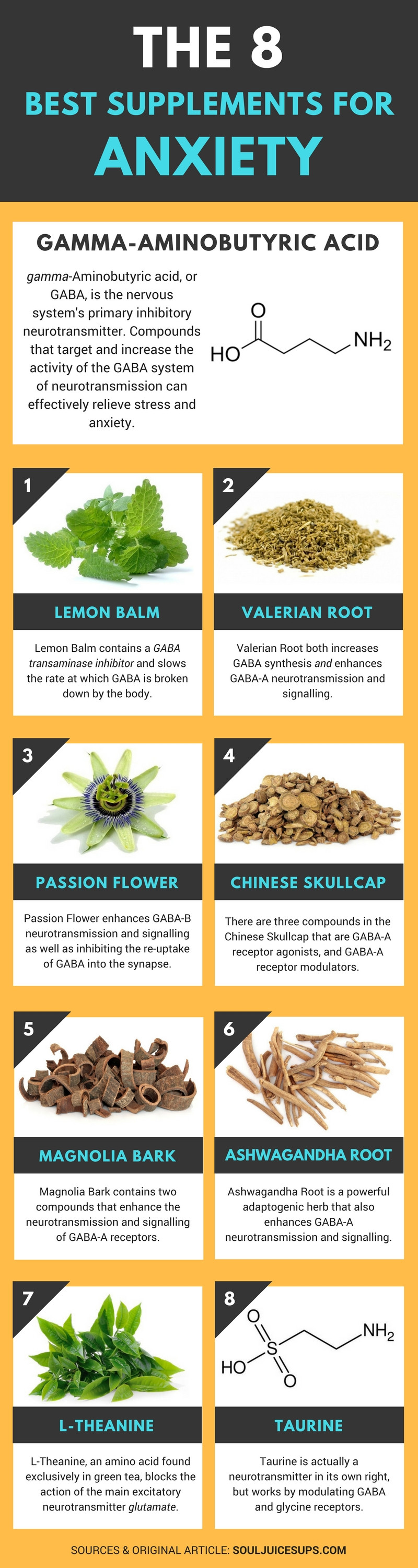 Best Supplements for Anxiety Infographic